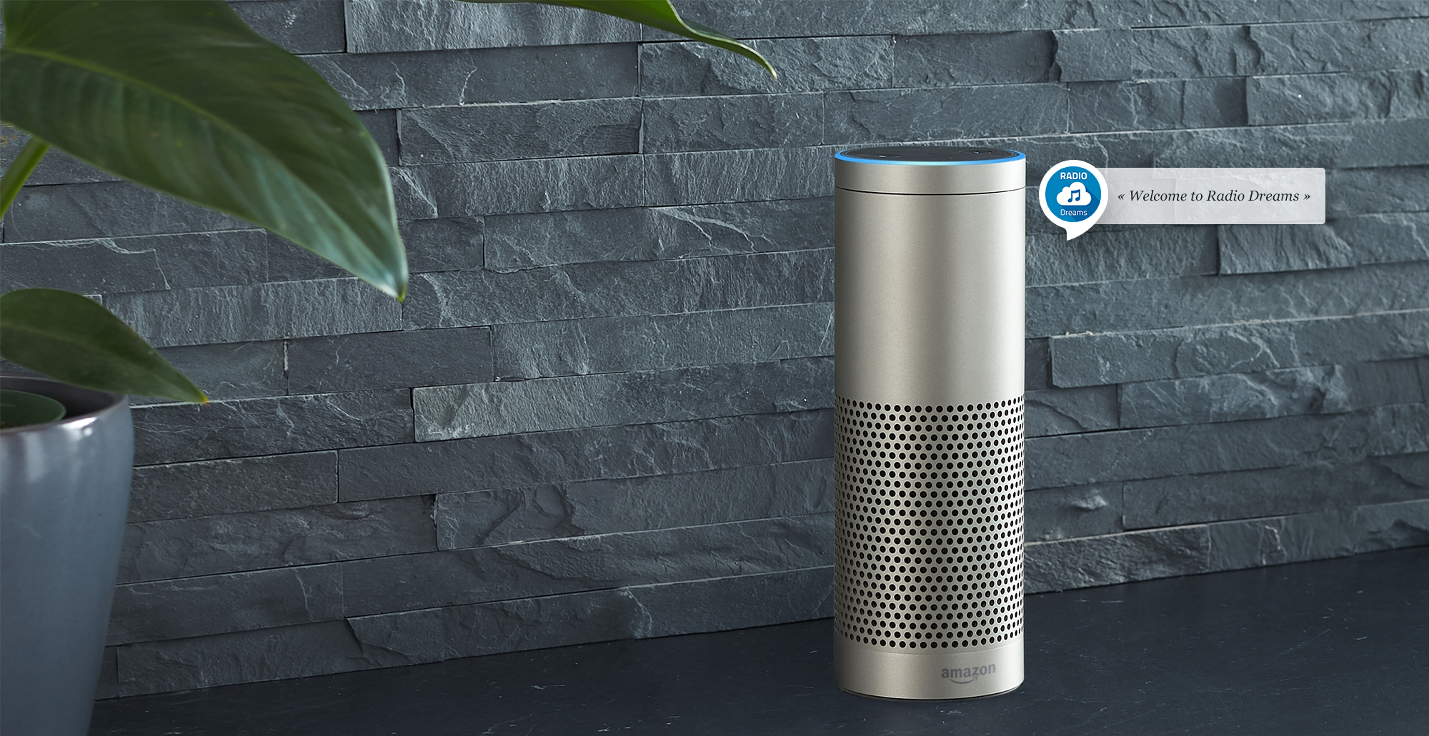 Add your Radio Station to a Smart Speaker - RadioKing